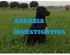 Logo - Agenzia Investigativa/recupero crediti