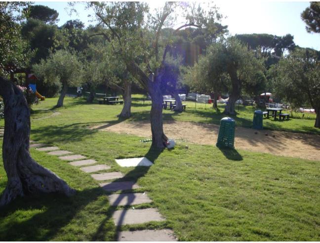 Anteprima foto 5 - Affitto Appartamento Vacanze da Privato a Cefalù - Mazzaforno
