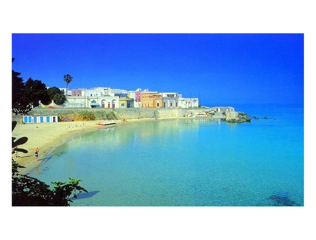 Anteprima foto 1 - Affitto Appartamento Vacanze da Privato a Nardò - Santa Maria Al Bagno