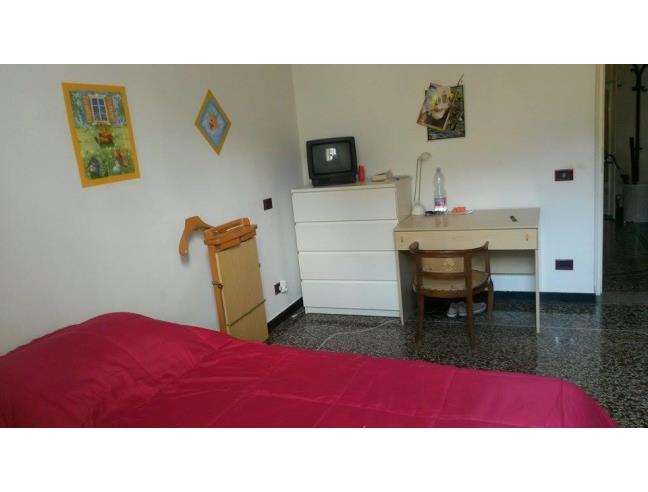 Anteprima foto 2 - Affitto Camera Singola in Appartamento da Privato a Genova - San Fruttuoso