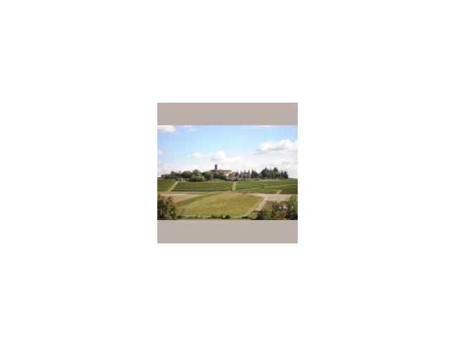 Anteprima foto 1 - Affitto Castello Vacanze da Privato a Rosignano Monferrato (Alessandria)