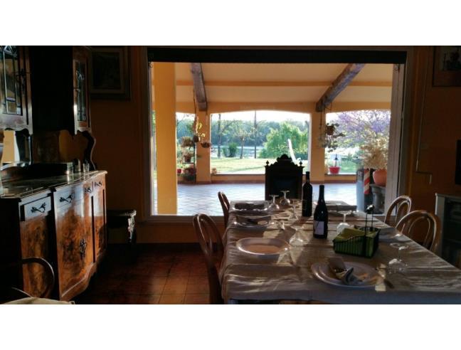 Anteprima foto 6 - Affitto Rustico/Casale Vacanze da Privato a Orvieto (Terni)