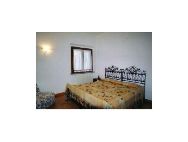 Anteprima foto 4 - Affitto Rustico/Casale Vacanze da Privato a Scansano (Grosseto)