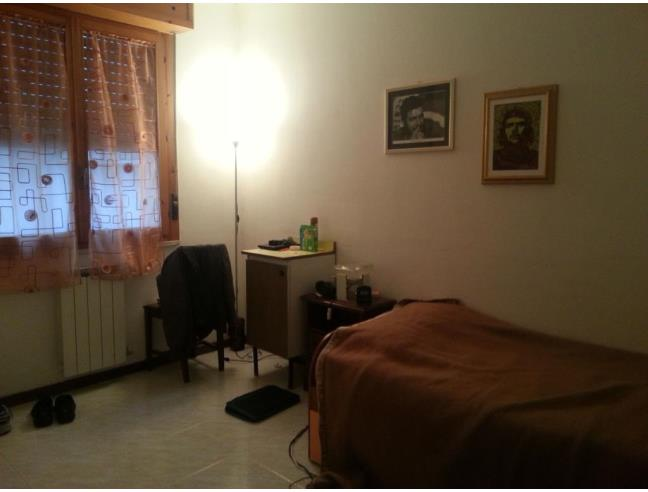 Anteprima foto 2 - Affitto Stanza Singola in Appartamento da Privato a Grosseto (Grosseto)