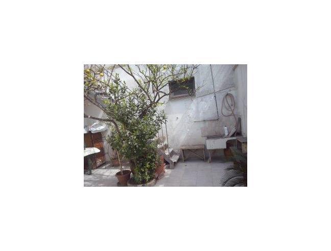 Anteprima foto 8 - Affitto Stanza Singola in Casa indipendente da Privato a Sogliano Cavour (Lecce)