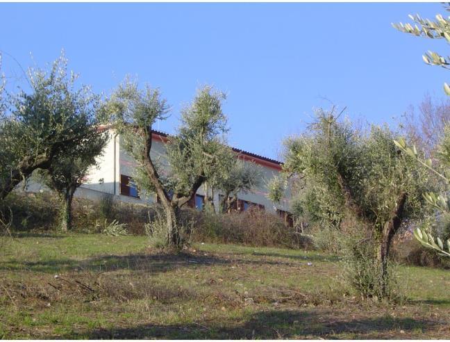 Anteprima foto 1 - Azienda Agricola in Vendita a Capena (Roma)
