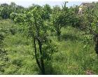 Foto - Terreno Edificabile Residenziale in Vendita a Corchiano (Viterbo)