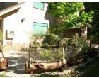 Foto - Villetta a schiera in Vendita a Santo Stefano in Aspromonte - Gambarie