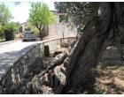 Foto - Affitto Villa Vacanze da Privato a Polignano a Mare - Casello Cavuzzi