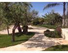 Foto - Affitto Villa Vacanze da Privato a Gallipoli (Lecce)