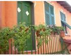 Foto - Casa indipendente in Vendita a Castiglione Chiavarese (Genova)