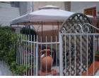 Foto - Affitto Appartamento Vacanze da Privato a Diamante (Cosenza)