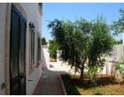 Foto - Affitto Villetta a schiera Vacanze da Privato a Manduria - Specchiarica