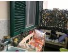 Foto - Stabile/Palazzo in Vendita a Livorno - Origine