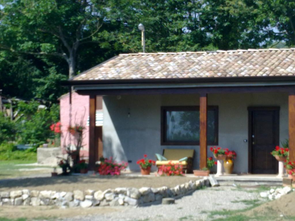 Case prefabbricate ecologiche in legno vendita altro da for Case di legno vendita
