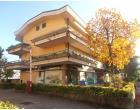 Foto - Appartamento in Vendita a Massa (Massa-Carrara)