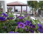 Foto - Affitto Villa Vacanze da Privato a Orosei - Sos Alinos