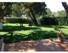 Foto - Affitto Villa Vacanze da Privato a Villasimius (Cagliari)