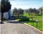 Foto - Casa indipendente in Vendita a Senigallia - San Silvestro