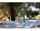 Foto - Affitto Casa Vacanze da Privato a Gallipoli (Lecce)