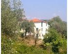 Foto - Casa indipendente in Affitto a Bolano - Debbio