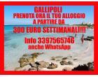 Foto - Affitto Appartamento Vacanze da Privato a Gallipoli (Lecce)