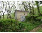 Foto - Terreno Agricolo/Coltura in Vendita a Camaiore - Agliano