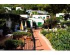Foto - Affitto Appartamento Vacanze da Privato a San Vito Lo Capo (Trapani)