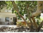 Foto - Affitto Casa Vacanze da Privato a Castellammare del Golfo - Scopello