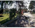 Foto - Villa in Vendita a Brindisi (Brindisi)
