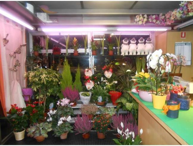 Negozio di fiori e piante davanti al cimitero vendita negozio a