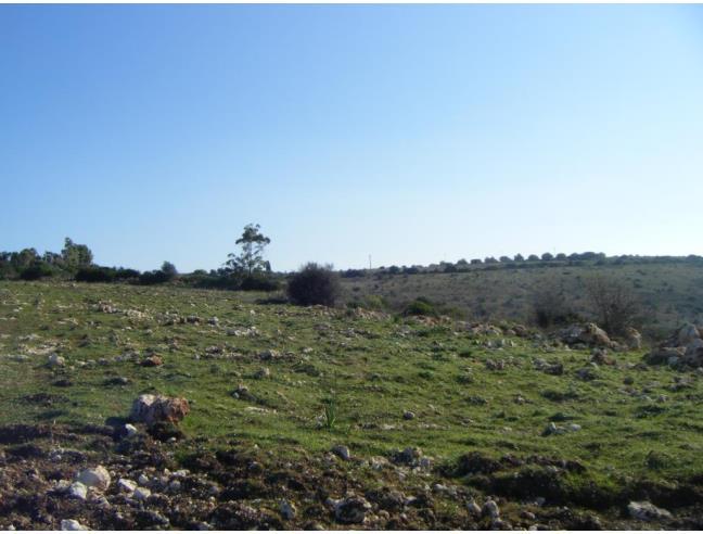Anteprima foto 2 - Nuove Costruzioni Vendita diretta da Costruttore a Usini (Sassari)