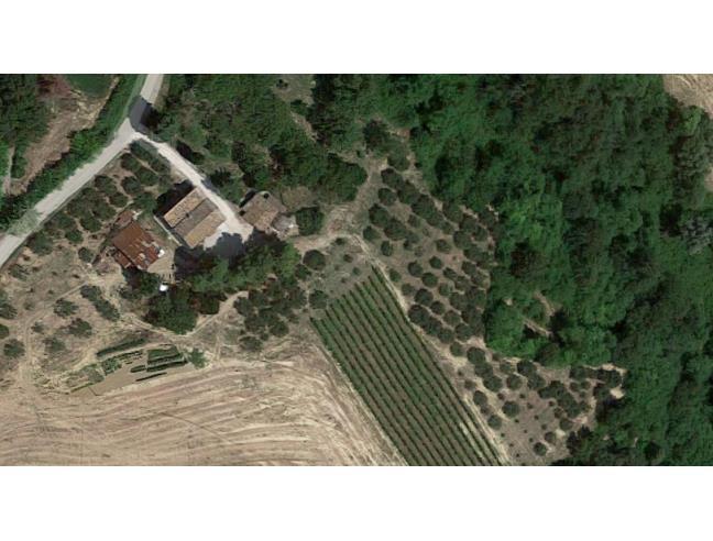 Anteprima foto 4 - Rustico/Casale in Vendita a Cartoceto (Pesaro e Urbino)