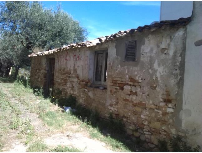 Rustico con terreno e piante di ulivo secolari vendita for Vendita piante ulivo