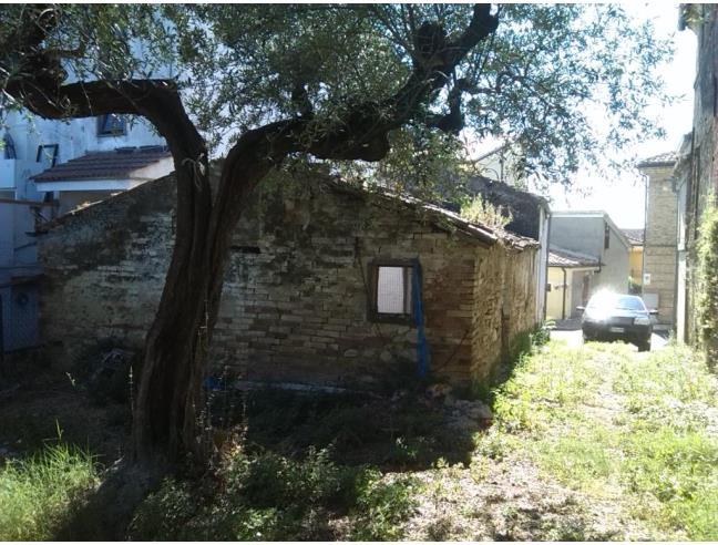 Piante Di Ulivo In Vendita : Rustico con terreno e piante di ulivo secolari vendita