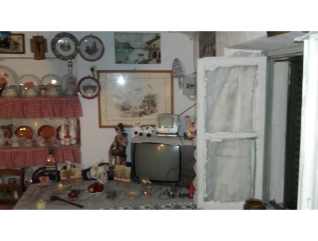 Anteprima foto 4 - Rustico/Casale in Vendita a Netro - Colla Di Netro