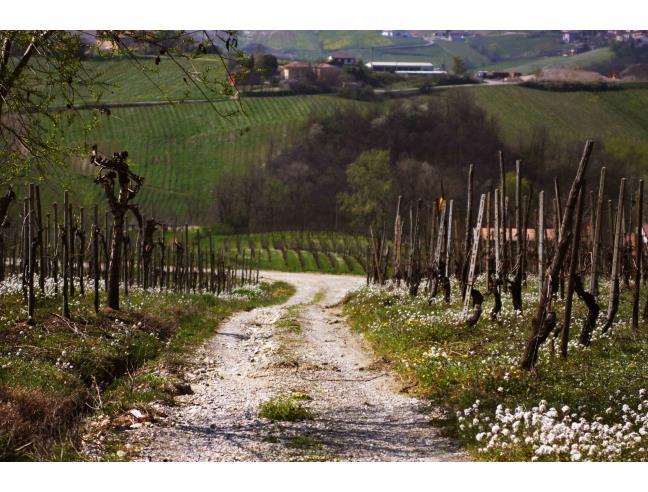 Anteprima foto 1 - Terreno Edificabile Residenziale in Vendita a Montecalvo Versiggia (Pavia)
