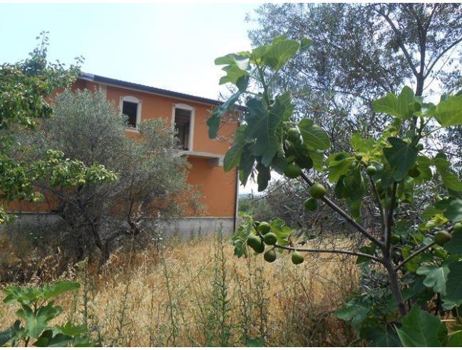 Anteprima foto 2 - Villa in Vendita a Venosa (Potenza)